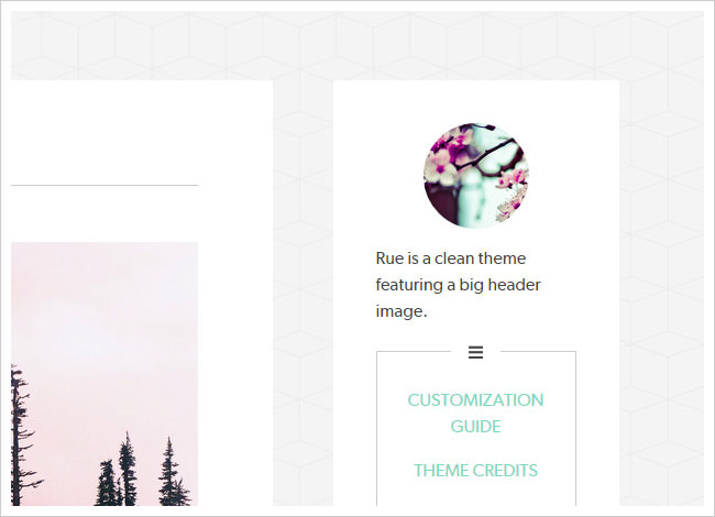 50 Handpicked Beautiful Tumblr Themes (2019) – Blogging for